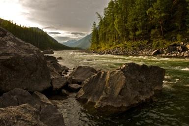 forest-landscape-mountains-4019