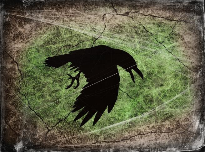 raven-930854_1280