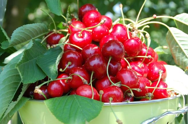 cherries-162900_1920