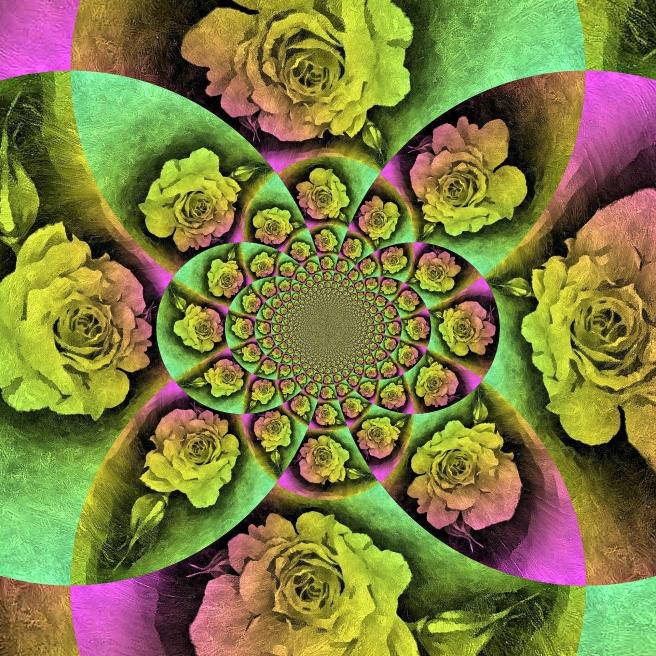 rose-1279957_1920