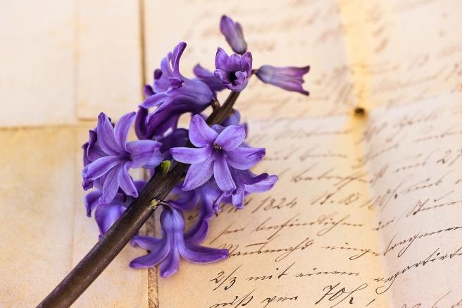 hyacinth-776823_1280
