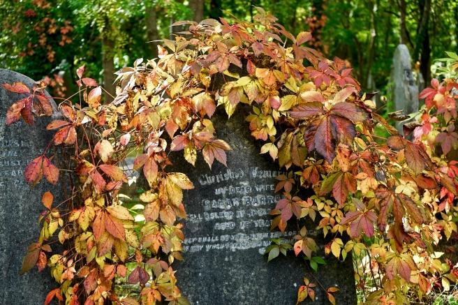 cemetery-2800618_1280