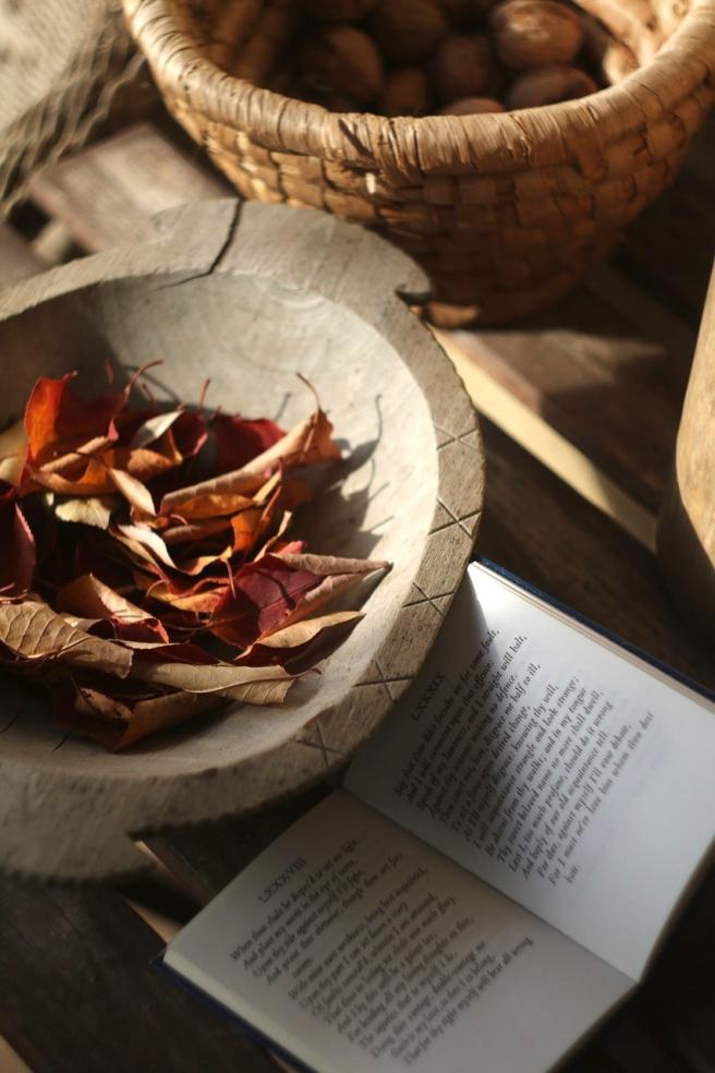 autumn-1048392_1280