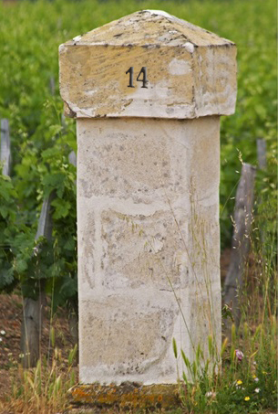 stone-gate-post-inscribed-with-chateau-gazin-bordeaux-gironde-aquitaine-france,2120661